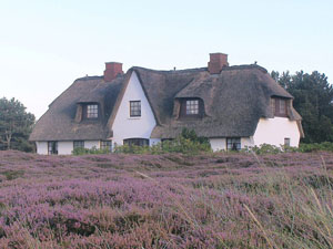 Maison traditionnelle sur Sylt